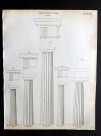 Rees 1820 Antique Print. Architecture 17 Doric Columns